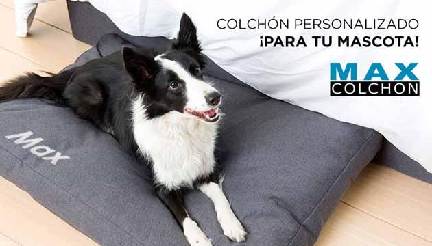 EL COLCHÓN PERFECTO PARA TU MASCOTA, PERSONALIZADO CON SU NOMBRE
