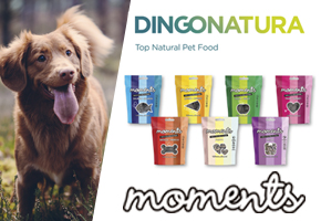 MOMENTOS ESPECIALES CON MOMENTS, SNACKS NATURALES PARA PERROS