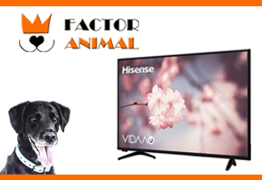 CONSIGUE ESTA SMART TV CON FACTORANIMAL