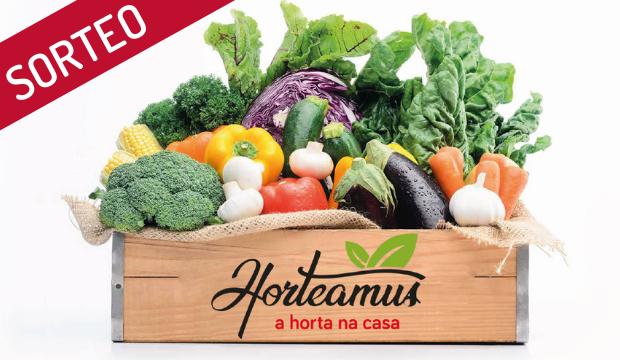 HORTEAMUS REGALA CESTA DE TEMPORADA